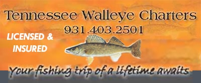 mobile-header-tn-walleye-charters